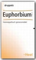 Heel Euphorbium compositum h   30ml