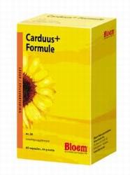 Bloem carduus + formule 60cap