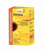 Bloem echinacea ef weerstand 60cap