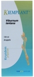 Kiemplant viburnum lantana 100ml