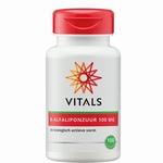 Vitals R-Alfa liponzuur 100mg 100cap