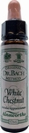 Bach 35 WHITE CHESTNUT (Paardenkastanje) 10ml