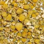 Kamille bloesem Egyptisch - Matricaria chamomilla
