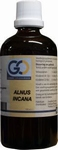GO Alnus incana 100ml