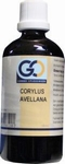 GO Corylus avellana 100ml