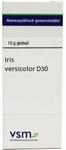 VSM Iris versicolor D30 globuli 10g